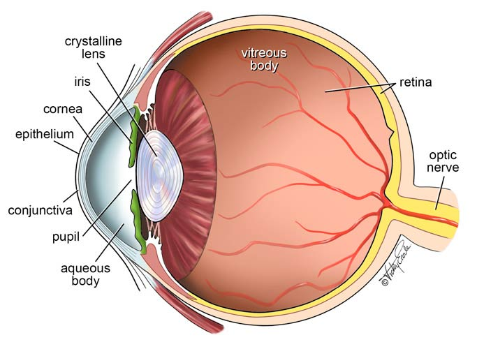 About the eye diagram